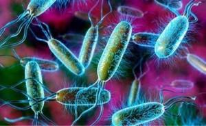 Бактериальная инфекция у ребенка