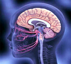 Абсцесс мозга