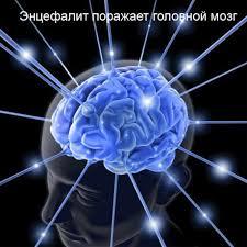 Ветряночный энцефалит поражает мозг