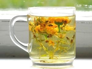 Лечение кандидозы травяным чаем