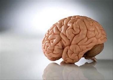 Нейроинфекции поражающие серое вещество