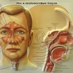 Гайморит: лечение народными средствами и методами в домашних условиях