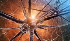 Как избавиться от вирусного энцефалита